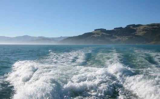 Nouvelle Zélande - Arthur's pass & Akaroa - les lubies de louise (30 sur 46)