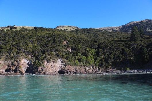 Nouvelle Zélande - Arthur's pass & Akaroa - les lubies de louise (31 sur 46)