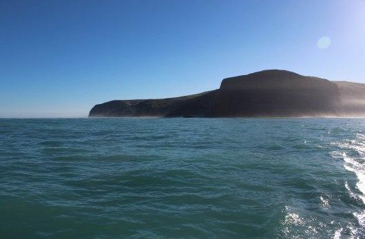 Nouvelle Zélande - Arthur's pass & Akaroa - les lubies de louise (39 sur 46)