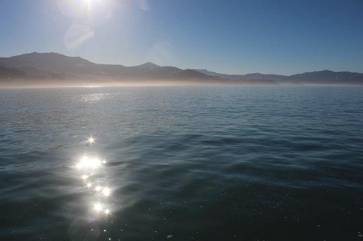 Nouvelle Zélande - Arthur's pass & Akaroa - les lubies de louise (44 sur 46)