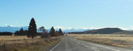 Nouvelle Zélande - Christchurch & twizel - les lubies de louise (13 sur 49)
