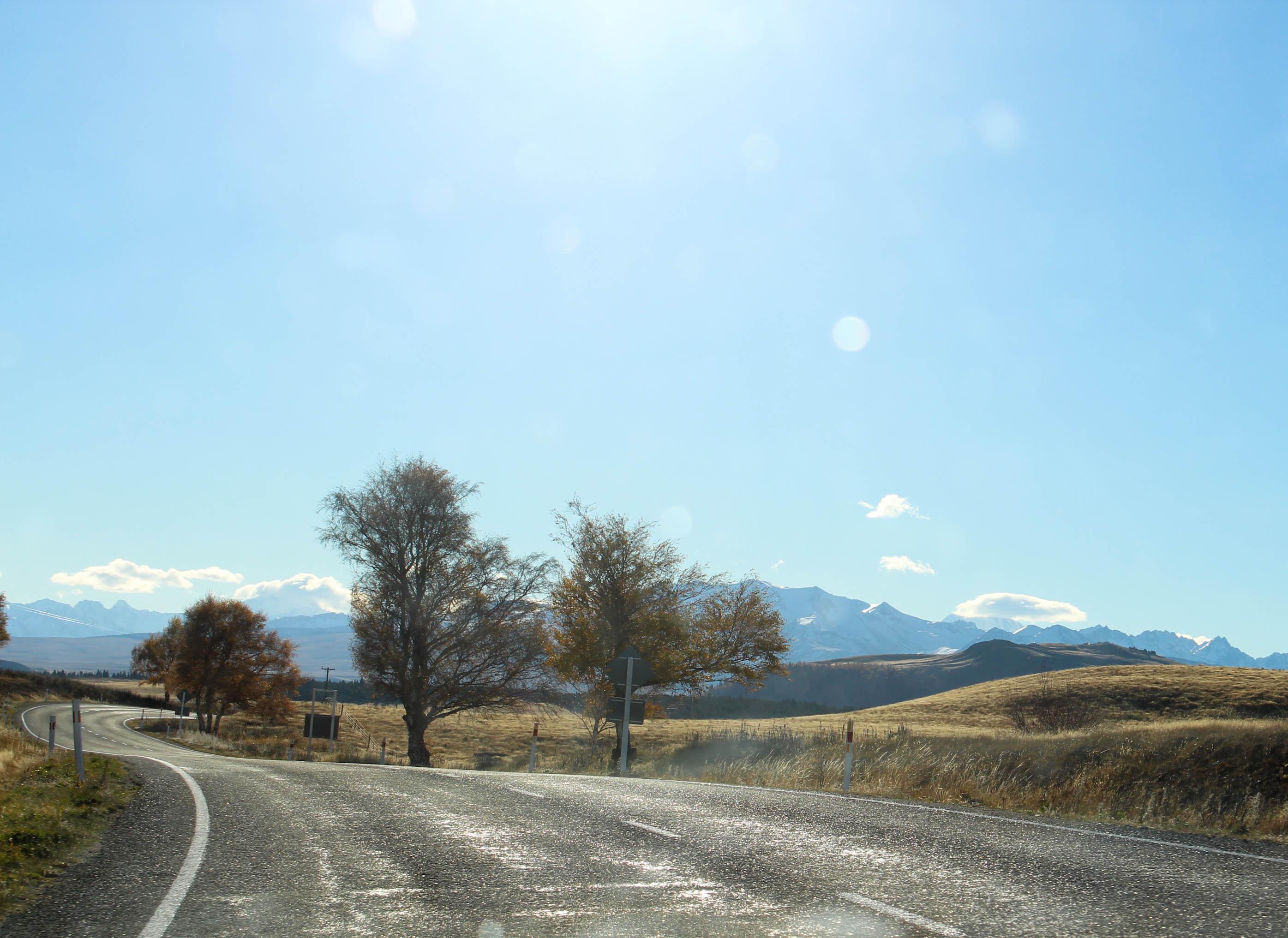 Nouvelle Zélande - Christchurch & twizel - les lubies de louise (16 sur 49)