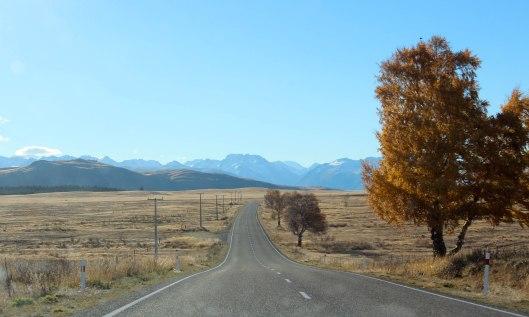 Nouvelle Zélande - Christchurch & twizel - les lubies de louise (18 sur 49)