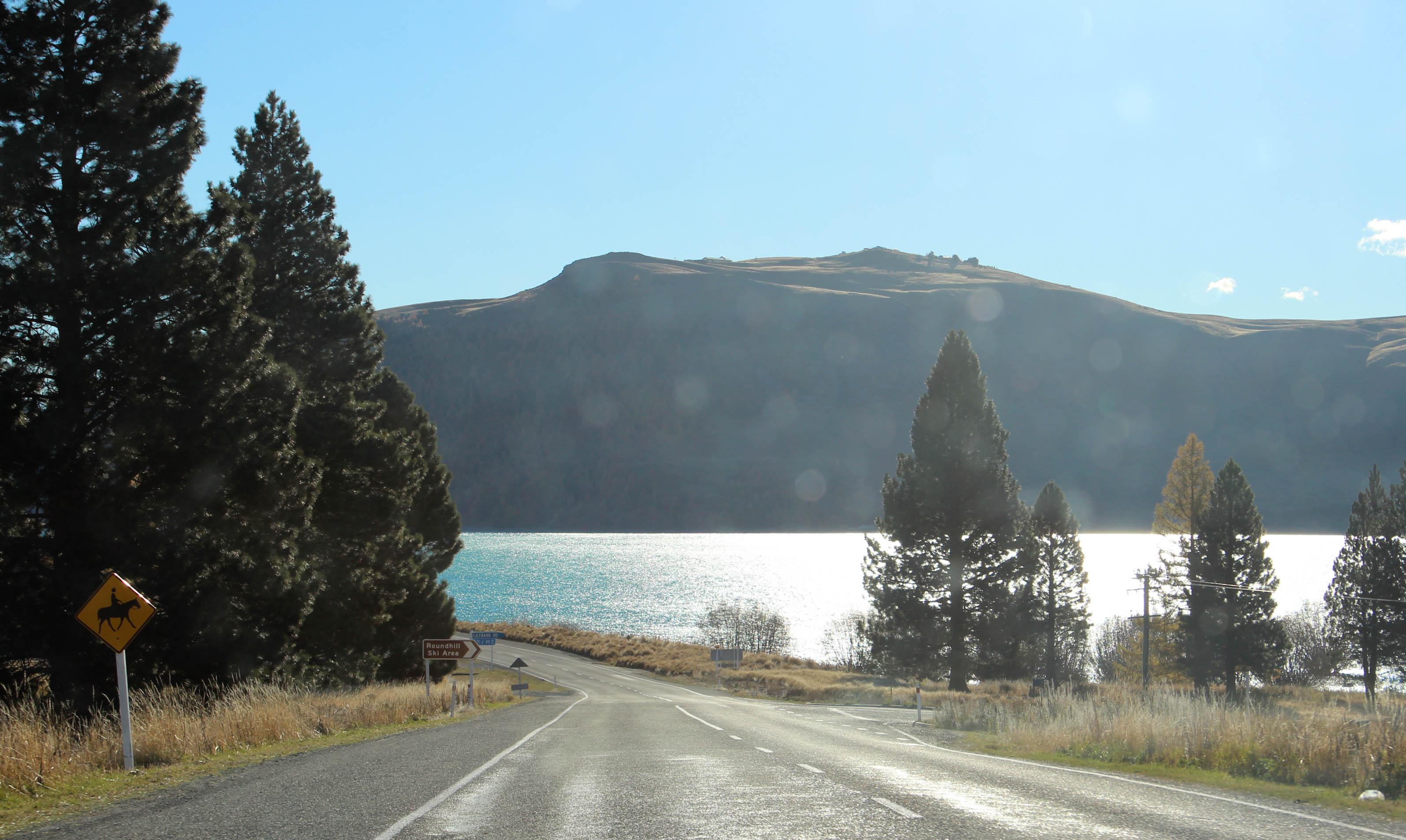 Nouvelle Zélande - Christchurch & twizel - les lubies de louise (19 sur 49)