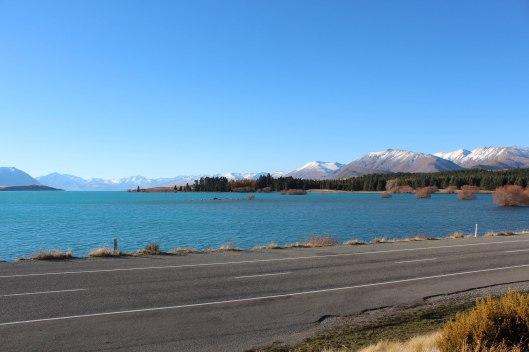 Nouvelle Zélande - Christchurch & twizel - les lubies de louise (21 sur 49)