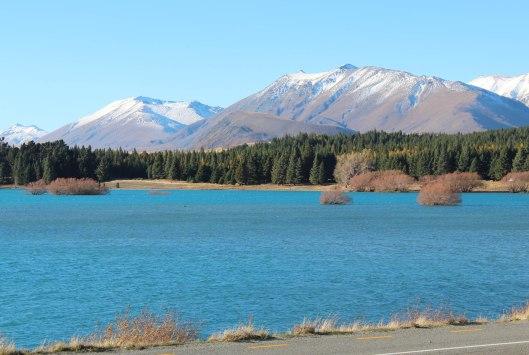 Nouvelle Zélande - Christchurch & twizel - les lubies de louise (24 sur 49)