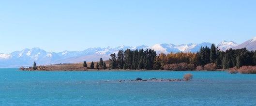 Nouvelle Zélande - Christchurch & twizel - les lubies de louise (25 sur 49)