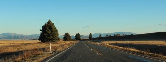 Nouvelle Zélande - Christchurch & twizel - les lubies de louise (39 sur 49)
