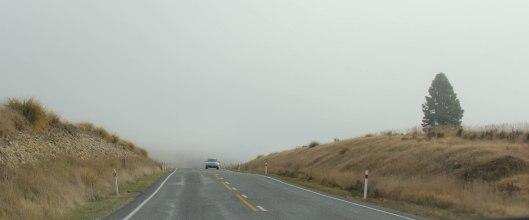 Nouvelle Zélande - Christchurch & twizel - les lubies de louise (7 sur 49)